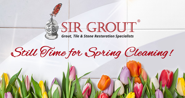 Sir Grout Houston Logo
