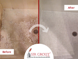 Before & After picture of a Grout Recoloring Service in Sugar Land, Texas